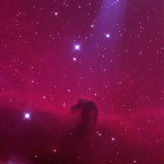 Horsehead Nebula IC 434 in Orion 2020-12-19 from NJ